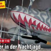 FliegerRevue X 46