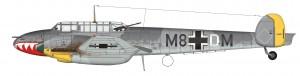 X46 Bf110E Nordsee color