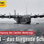 FliegerRevue X52