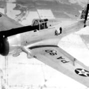 Der Curtiss-Falke war weltweit im Einsatz