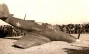 Luftkrieg am neutralen Himmel über Portugal