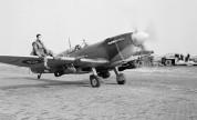 Die Spitfire als Sturzkampfbomber