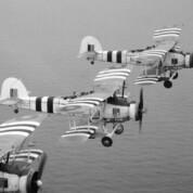 Die Marineflieger der Royal Navy im Zweiten Weltkrieg